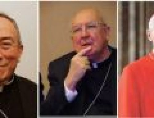 Global survivors to Martin: Three cardinals should step down from WMOF