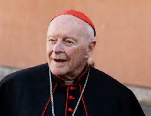 Global survivors of abuse looking to McCarrick report to provide dramatic proof of Pope Francis' new promise to abolish papal secrecy